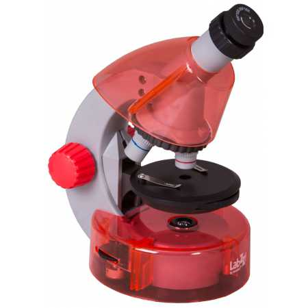 Mikroskop Levenhuk LabZZ M101 Orange\Pomeranč 40x-640x
